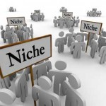 Consulting niche